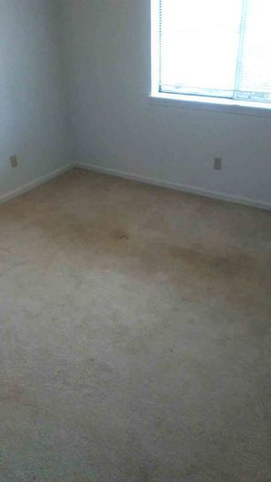 Before & After Carpet Cleaning in Columbus, OH (2)