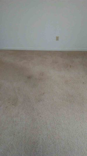 Before & After Carpet Cleaning in Columbus, OH (3)