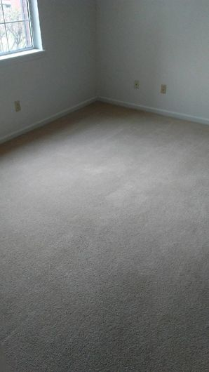 Before & After Carpet Cleaning in Columbus, OH (4)