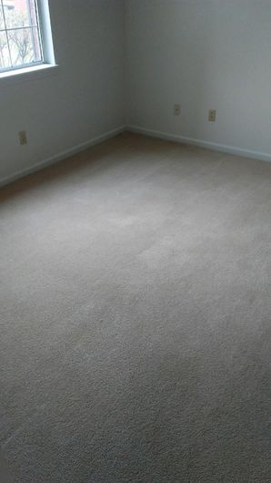 Before & After Carpet Cleaning in Columbus, OH (5)