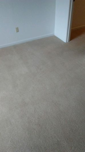 Before & After Carpet Cleaning in Columbus, OH (6)