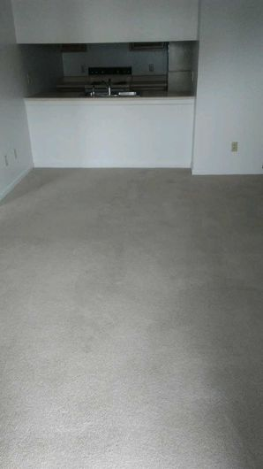 Before & After Carpet Cleaning in Columbus, OH (7)