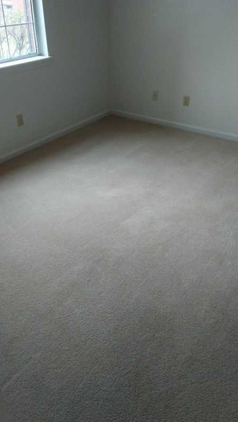 Before & After Carpet Cleaning in Columbus, OH (9)